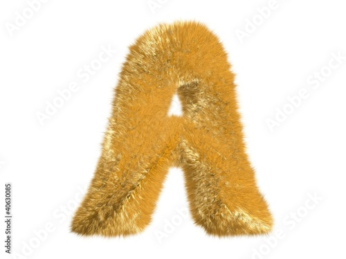 Letter A from fur fox alphabet