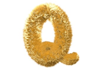 Letter Q from fur fox alphabet