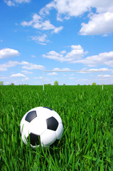 soccer ball © Alekss