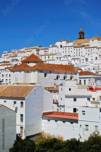 Alcala de los Grazules, Andalusia, Spain © Arena Photo UK