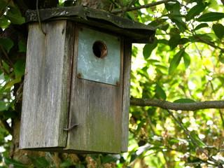 Nistkasten aus Holz für Stare und andere Vogelarten
