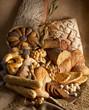 Bread - composition II