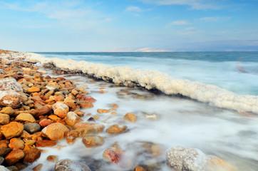 Brzeg Morza Martwego w pobliżu Ein Gedi, Izrael