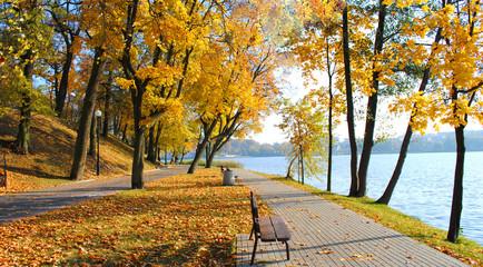 park w jesiennym słońcu