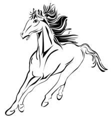 Wild running horse stock image vector