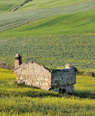Rural ruins in the italian country