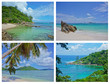 Collage of Tropical Landscapes, Seychelles