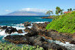 Beautiful Maui Beach Scene