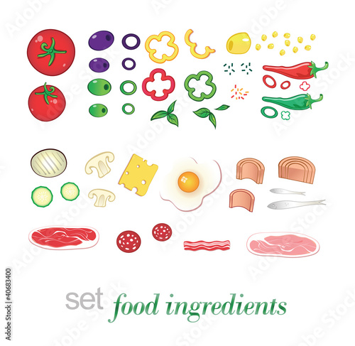 set food ingredients collection vector