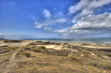 Dunes in Holland