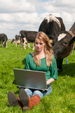 Dutch girl with laptop in field with cows