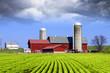 Milk Farm