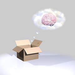 Thinking outside the box-Brain