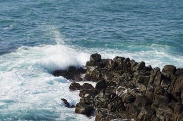 東尋坊の海