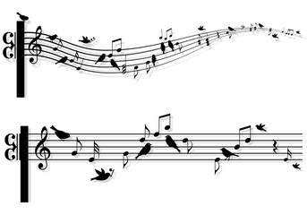 music notes with birds, vector