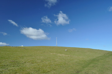 Field and communications mast in Derbyshire, UK