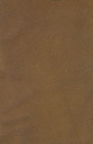 Genuine leather background (outer side) poster