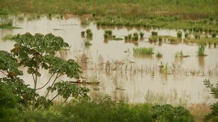 Fischer auf Amazonas