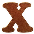 Leather alphabet. Leather textured letter X