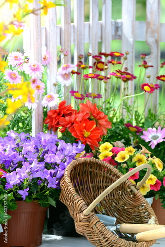 Gartenromantik - 40737467