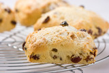 Freshly baked fruit scones on a cooling rack.
