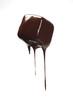 bocconcino di Cioccolato grondante su fondo bianco