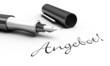 Angebot! - Stift Konzept