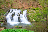 Fototapety Waterfall in the forest in spring