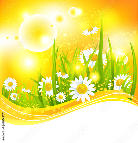 Sunny summer background
