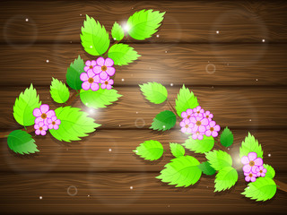 Blossoming cherry on wooden background. Vector illustration.