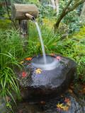 Fototapety Brunnen