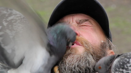 Man feeds pigeons with his mouth