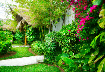 Exotic Landscaping Design