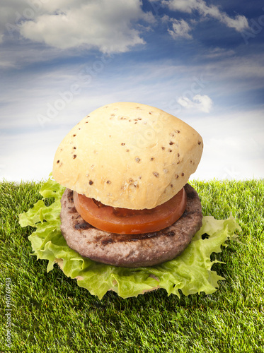 sandwich with hamburger