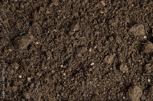 Leinwanddruck Bild close-up of a soil