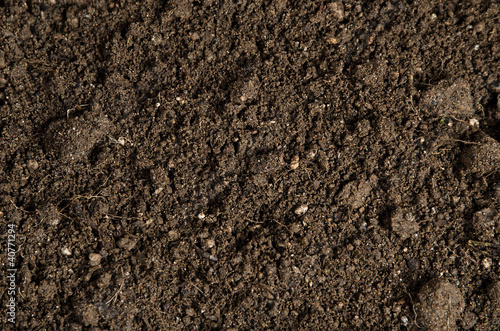 Leinwandbild Motiv close-up of a soil