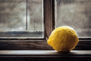 Lemon on the window