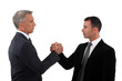 Partners handshaking