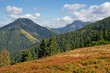 Colorful autumn in the Western Tatras (Rohace)