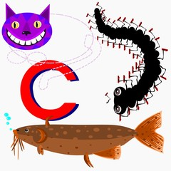 C catfish, centipede,  cat