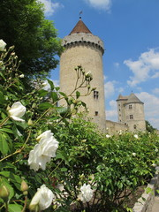 chateau des blandy les tours en 77