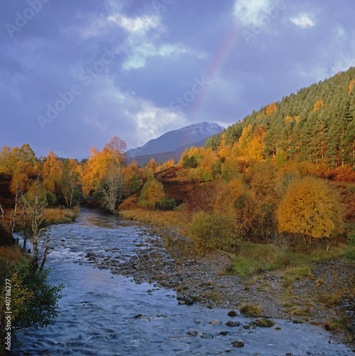 Rocky river and autumn trees in rural landscape