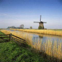 Windmill and wheatfield along rural river