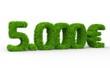 5000 € 3d Schrift gras