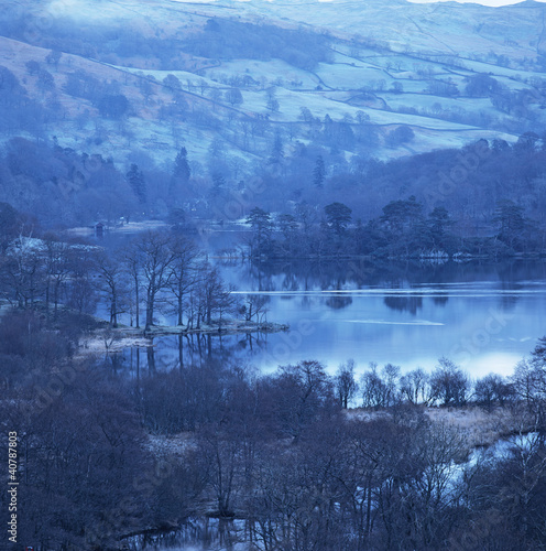Trees in still lake in snowy landscape
