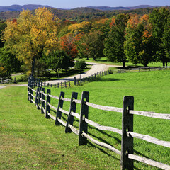 Wooden fence along rural pasture