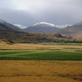 Grassy fields in rural landscape