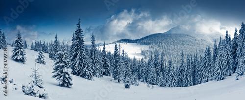 Winter - 40792214