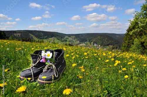 Wanderschuhe Wiese  Frühling