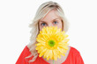 Fair-haired woman hiding her face behind a yellow flower